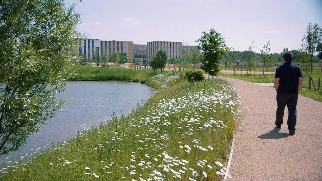 Eddington Landscape