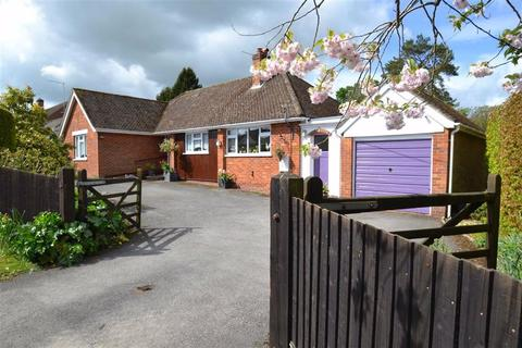 3 bedroom detached bungalow for sale - Knights Lane, Ball Hill, Newbury, Berkshire, RG20