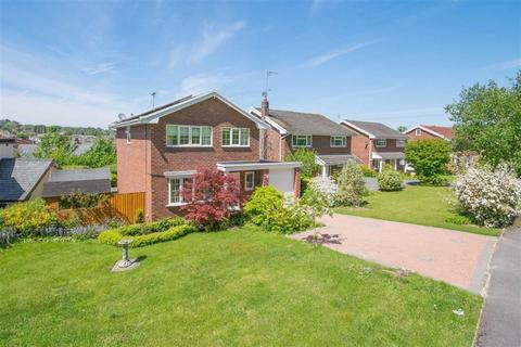 4 bedroom detached house for sale - Bryn Noddfa, Pwll Glas, Mold