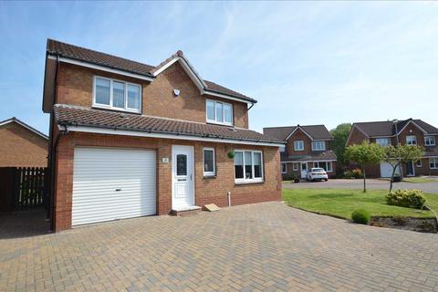 3 bedroom detached house for sale - Buller Close, Blantyre