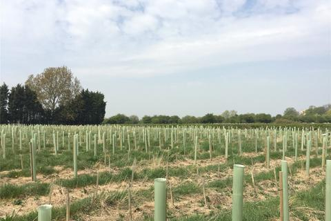 Land for sale - Land At Bubwith, Bubwith, Selby, North Yorkshire, YO8
