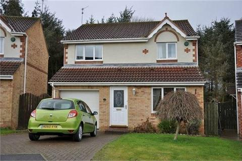 3 bedroom detached house to rent - Percy Lonnen, Prudhoe, Northumberland