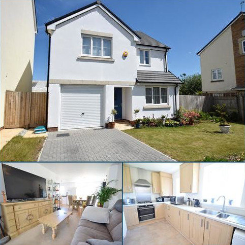 4 bedroom detached house for sale - Clarendon Gardens, Old Torrington Road