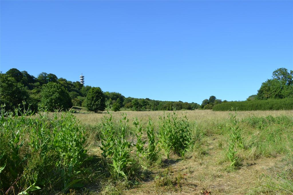 View of field to the front of the property