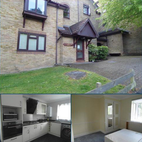 2 bedroom apartment to rent - Cypress Road