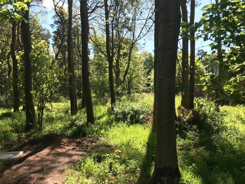 Pinkerton Hill Pinkerton Hill Spot Dunbar East Lothian