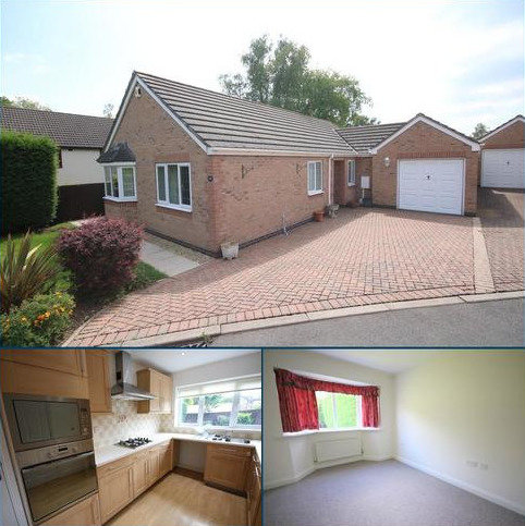 3 bedroom detached bungalow to rent - Lacey Court, Charnwood Road, Shepshed