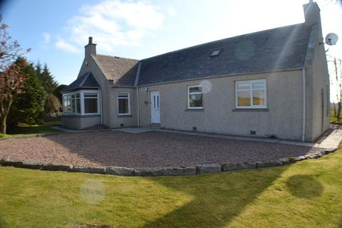 3 bedroom bungalow to rent - Dorbshill, Ellon, Aberdeenshire, AB41 8HG