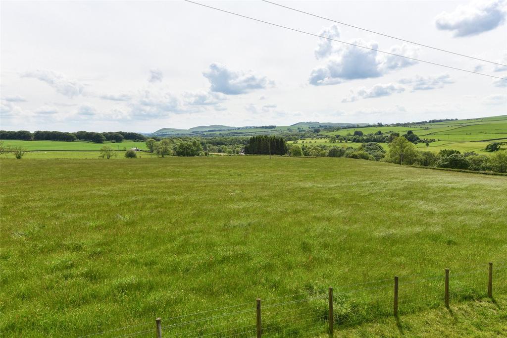 Silage Field