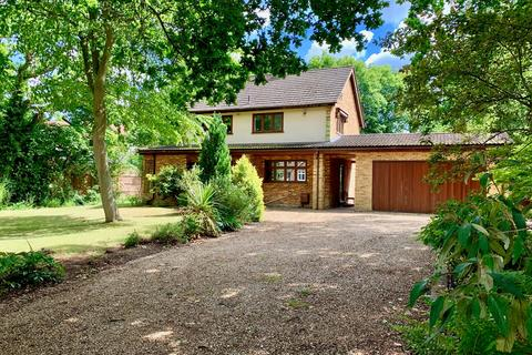 4 bedroom detached house for sale - Fir Tree Lane, Little Baddow, CM3