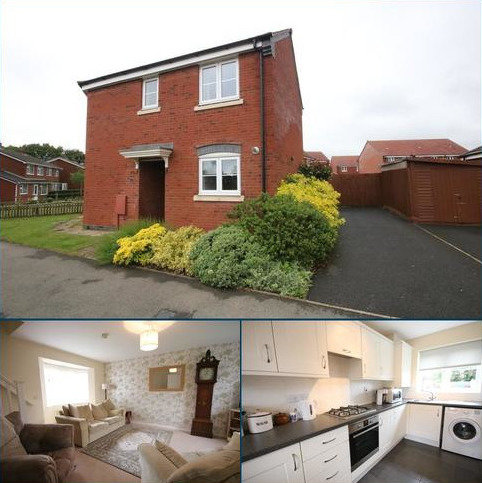 3 bedroom semi-detached house to rent - Flint Drive, Asfordby