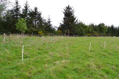 Land for sale - Site at Mannachie Road, Forres