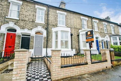 3 bedroom terraced house for sale - Park Lane, Norwich