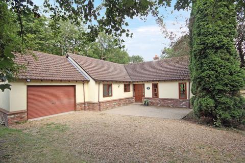 3 bedroom bungalow to rent - Hilton