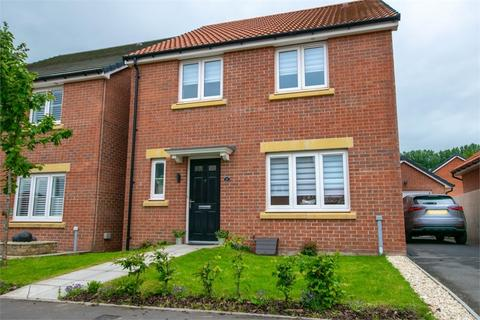 4 bedroom detached house for sale - Harlech Road, Cardiff, South Glamorgan