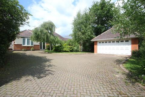 4 bedroom detached bungalow for sale - Fountain Lane, Hockley