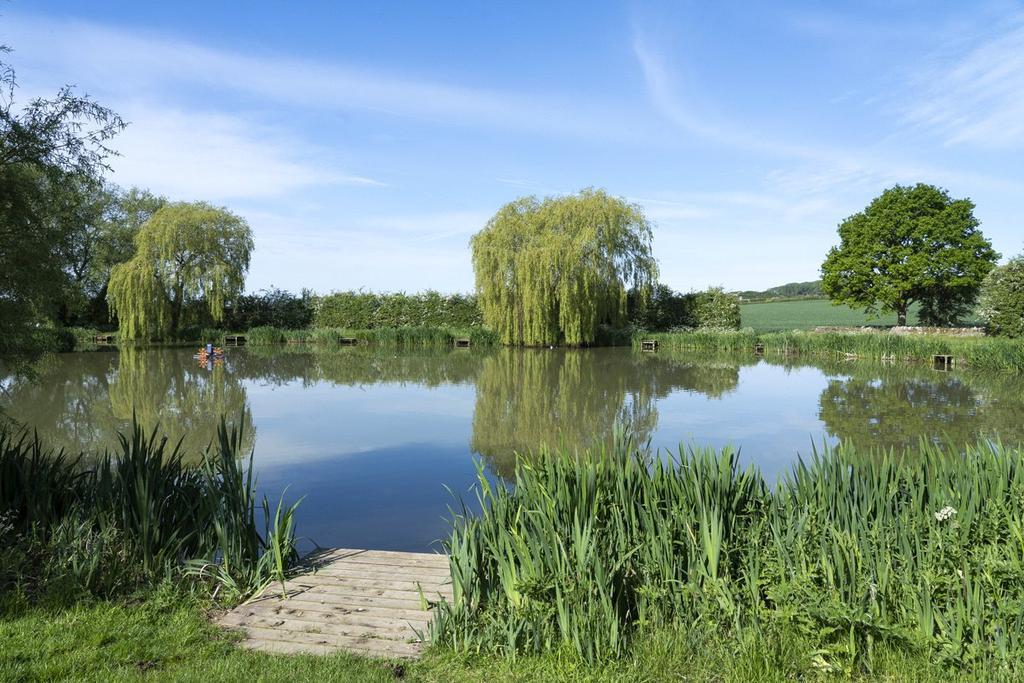 Lower Court Lake
