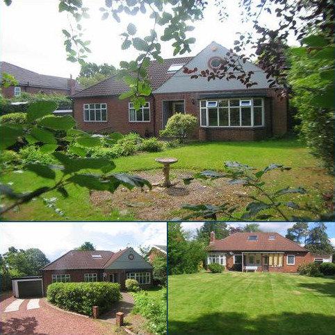 4 bedroom detached bungalow for sale - Darras Road, Darras Hall, Ponteland NE20
