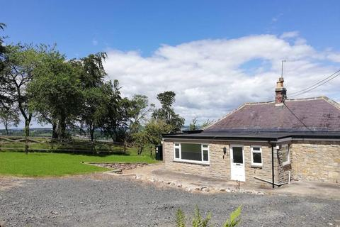 3 bedroom detached bungalow to rent - Dipton Mill Road, Hexham