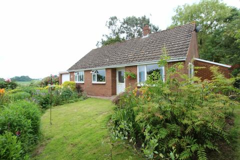 3 bedroom detached bungalow for sale - FARRINGDON, EXETER