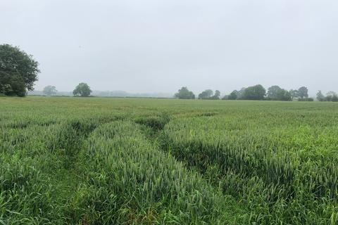 Farm land for sale - 27.27 Acres Productive Arable and Grassland, Ings Lane, Kirkbridge, Crakehall, Bedale