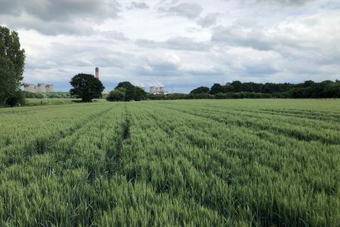 Land for sale - 16.75 Acres, Mill Lane, Barlow, Nr Selby YO8 8EY