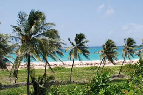 1 bedroom property with land - Christ Church, , Barbados