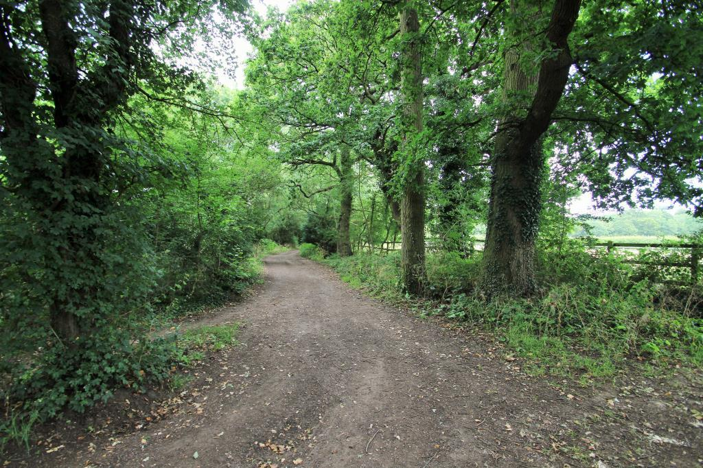 Byway To The Coombes & Beyond