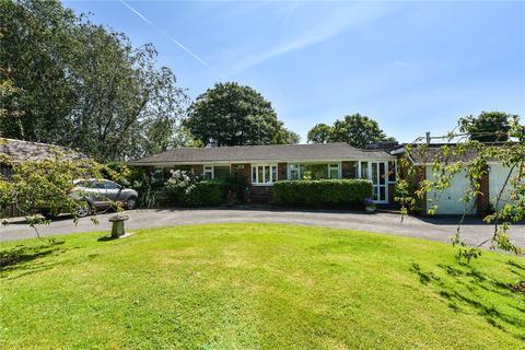 3 bedroom detached bungalow for sale - Alton Lane, Four Marks, Alton, Hampshire