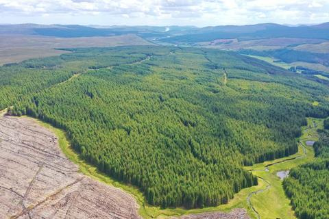 Land for sale - Rosail Forest, Oykel Bridge, Sutherland IV27
