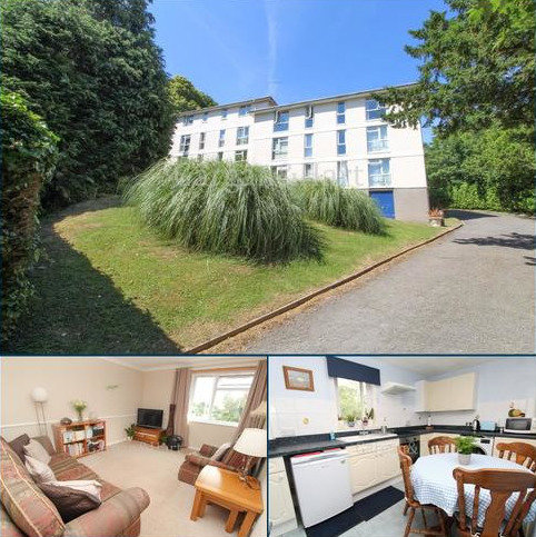 1 bedroom apartment for sale - Lower Warberry Road, Torquay