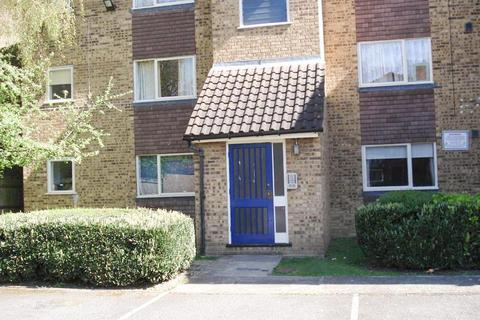 Studio to rent - Willoughby Mews