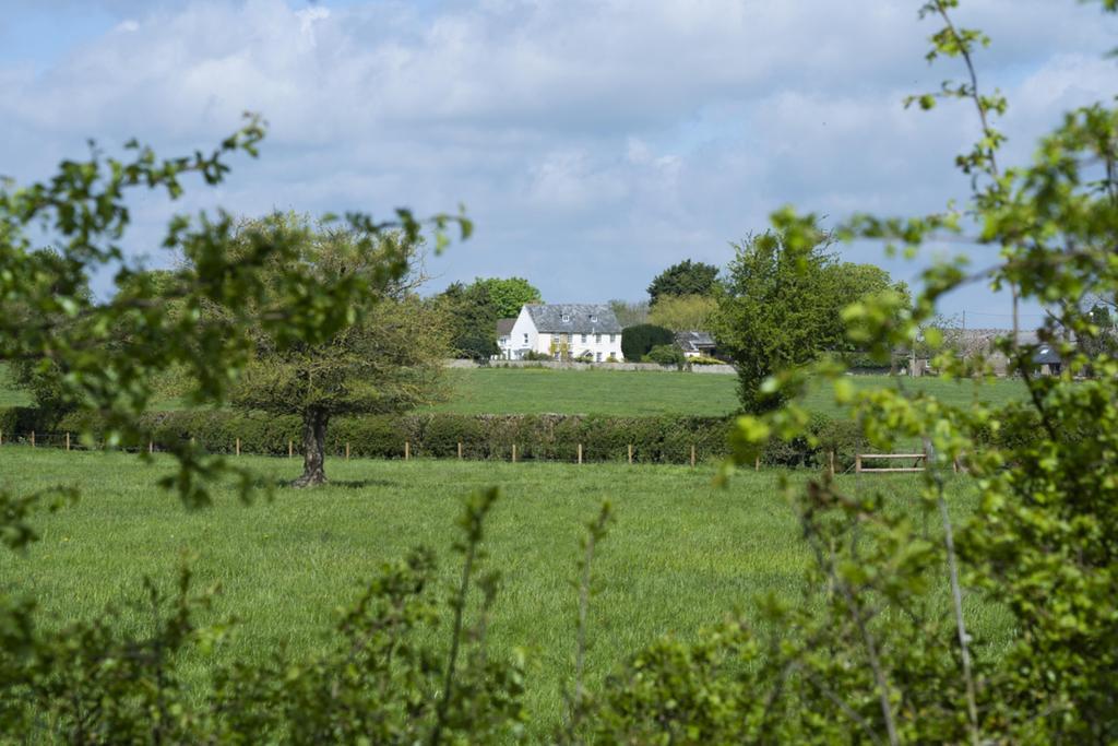 Whitehall Farm 068