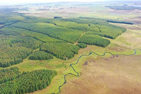 Land for sale - Torigil Forest, Broubster, Caithness KW14