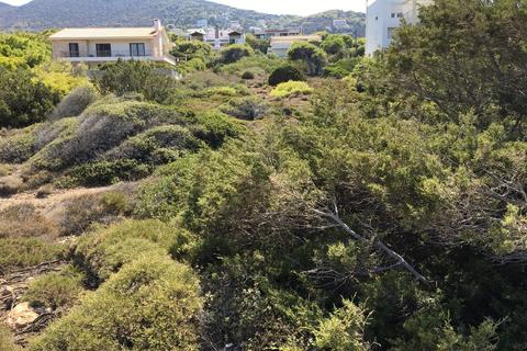 Apartment - Sea fronted piece of land, with panoramic views.In Greece. Αριάδνης 33, Chamolia 190 03 The total area is 997.77 m²  ...