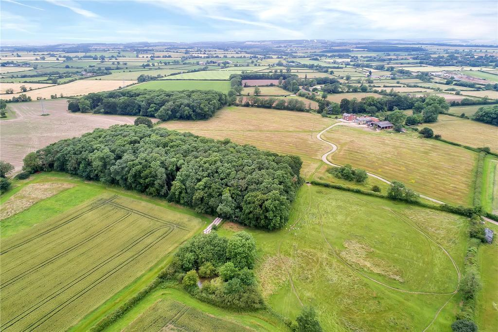 Woodland and Land