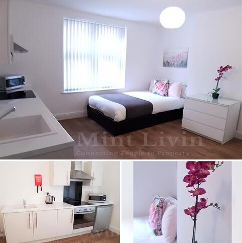 1 bedroom house to rent - 1 bedroom Semi Detached Room Only in Nether Edge And Sharrow