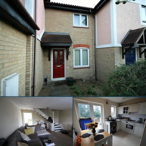2 bedroom terraced house to rent - Peto Avenue, Colchester