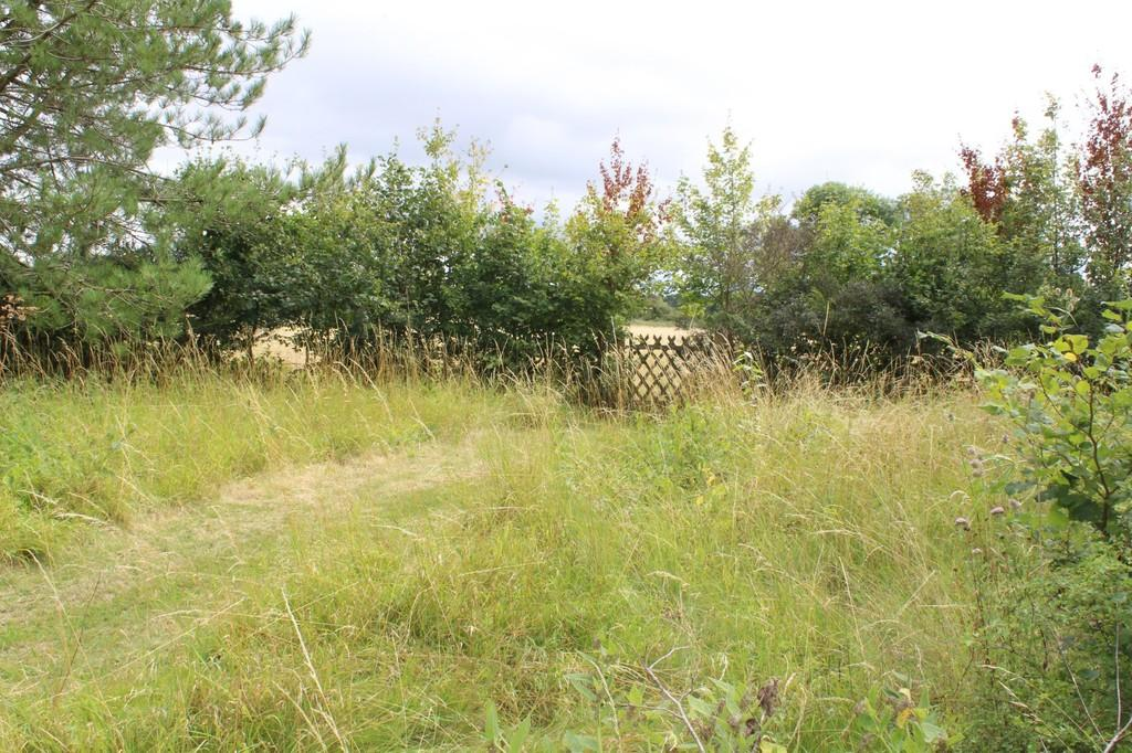 View from topof rear garden