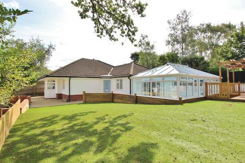 4 bedroom detached bungalow for sale - Albert Road, Corfe Mullen, WIMBORNE, Dorset