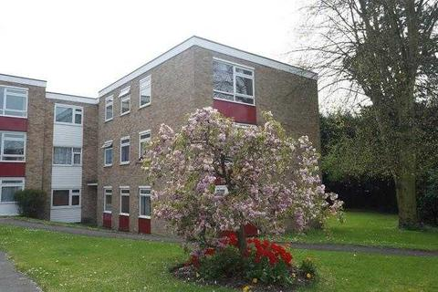 2 bedroom apartment to rent - Courtlands, Patching Hall Lane, Chelmsford