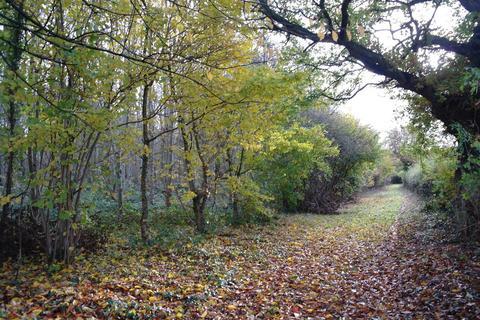 Land for sale - Off Back Lane, Little Ouseburn, York YO26 9TD
