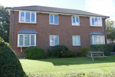 1 bedroom flat to rent - 11 Springfield Court, Anlaby, HU10 6SJ