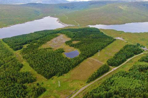 Land for sale - Ghriama Wood, Loch Shin, Sutherland IV27