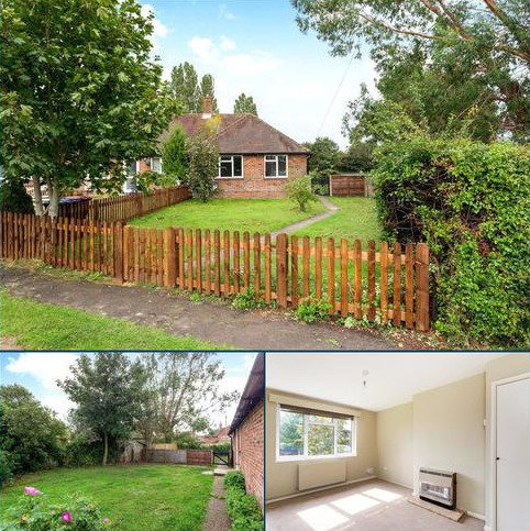 3 bedroom bungalow to rent - St. Blaises Road, Boxgrove, Chichester, West Sussex, PO18