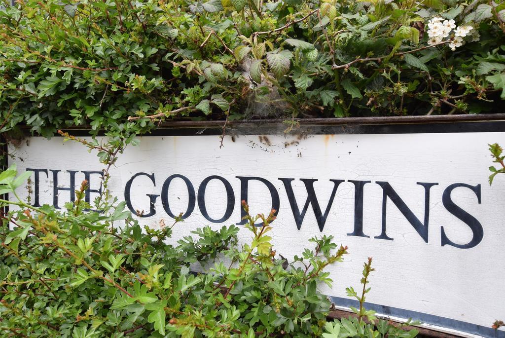 The goodwins