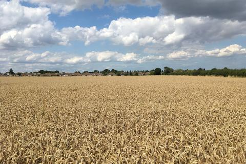 3 bedroom property with land to rent - Bradley Road Farm, Bradley DN37 0AA