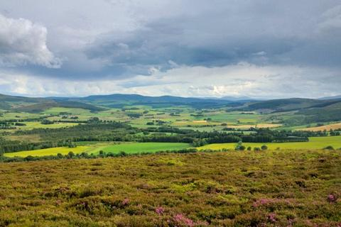 Land for sale - (Lot 4 Craig Castle Estate), Rhynie, Huntly, Aberdeenshire
