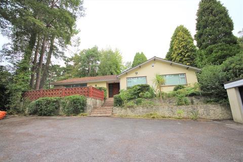 4 bedroom detached bungalow to rent - Bury Road, Branksome Park