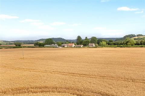 Farm for sale - Somerton Door Farm- Lot 1A-I, Somerton Door Drove, Somerton, Somerset, TA11